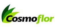 cosmoflor